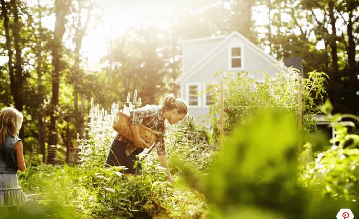 vườn trước nhà
