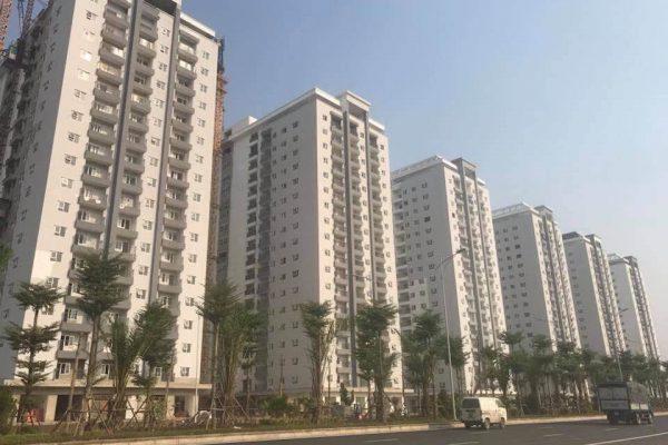 Bùng nổ chung cư giá rẻ năm 2020